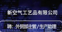 浙江新空气工艺品有限公司